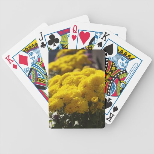 Yellow marigolds bask in sunlight poker deck
