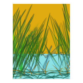 Yellow Marsh Postcard