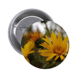 Yellow Milkweed 2 Inch Round Button