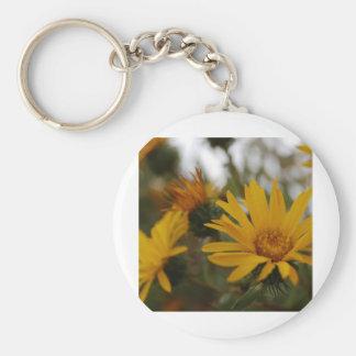 Yellow Milkweed Basic Round Button Keychain