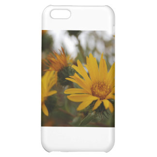 Yellow Milkweed Case For iPhone 5C