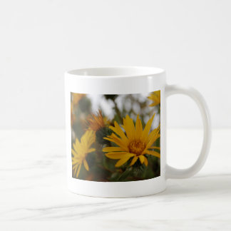 Yellow Milkweed Classic White Coffee Mug
