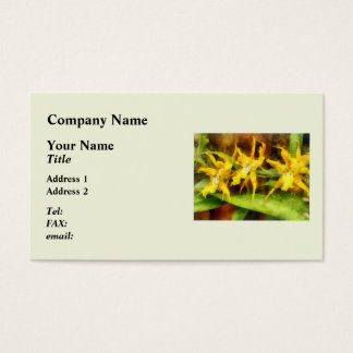 Yellow Miltassia Orchids Business Card