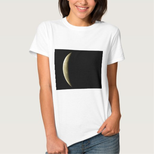 yellow-moon-eclipse t-shirt