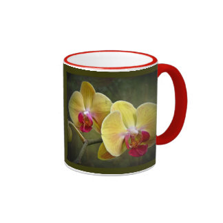 Yellow Moth Orchids - Phalaenopsis Mugs