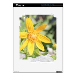 Yellow Mountain Wildflower Decals For iPad 2