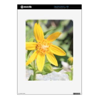 Yellow Mountain Wildflower iPad Skin