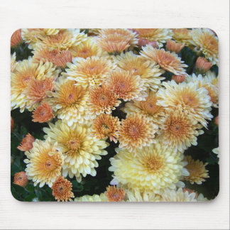 Yellow Mums Mouse Pad