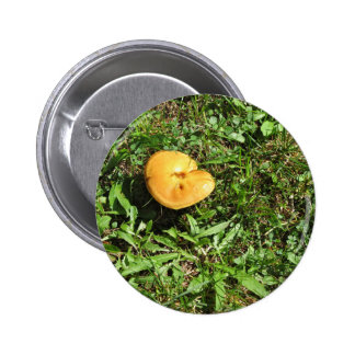 Yellow mushroom on a green meadow button