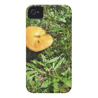 Yellow mushroom on a green meadow iPhone 4 cover
