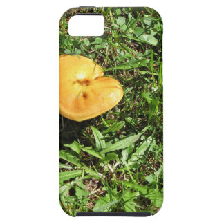 Yellow mushroom on a green meadow iPhone SE/5/5s case