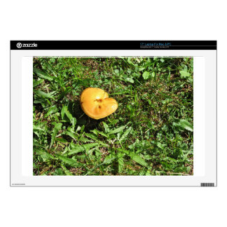 Yellow mushroom on a green meadow laptop decals