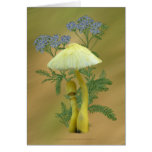 Yellow Mushrooms with tiny blue flowers Card