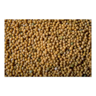 Yellow mustard seeds print