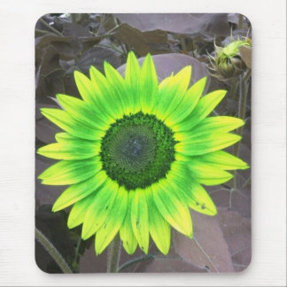 Yellow N Green Sunflower Mousepad