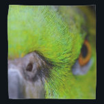 """Yellow-Naped Amazon Parrot by Shirley Taylor Bandana<br><div class=""""desc"""">Yellow-naped parrot bandana. &#39;Back Off&#39; Click on the customize button to add your text. Image can be rotated or re-sized.</div>"""