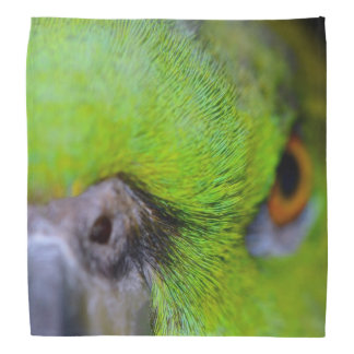 Yellow-Naped Amazon Parrot by Shirley Taylor Bandana