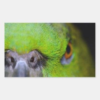 Yellow-Naped Parrot Rectangular Sticker