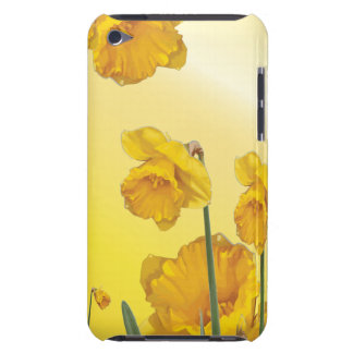 Yellow Narcissus Daffodil Case-Mate iPod Touch Case