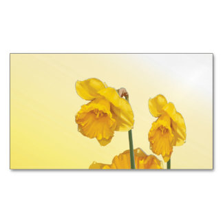 Yellow Narcissus Daffodil  Retro Vintage look Magnetic Business Card