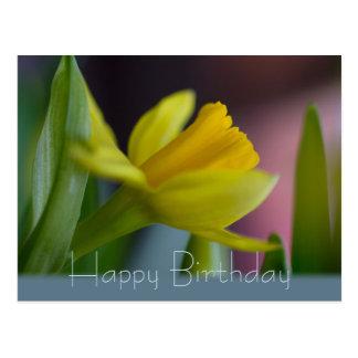 Yellow narcissus flower CC0742 Happy Birthday Postcard