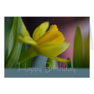 Yellow narcissus flower CC0743 Happy Birthday Greeting Card
