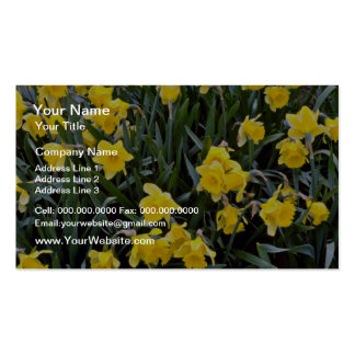 Yellow Narcissus flowers Business Cards
