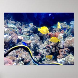 yellow neon fish poster