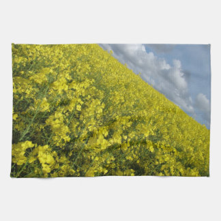 Yellow Oilseed agaisnt blue and cloudy sky Towels