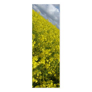 Yellow Oilseed agaisnt blue and cloudy sky Mini Business Card