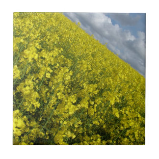 Yellow Oilseed agaisnt blue and cloudy sky Tiles