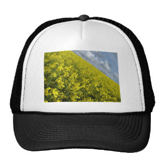 Yellow Oilseed agaisnt blue and cloudy sky Trucker Hat