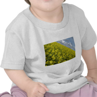 Yellow Oilseed agaisnt blue and cloudy sky Tees