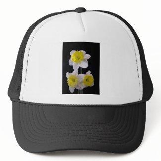 Yellow on White Daffodil zazzle_hat