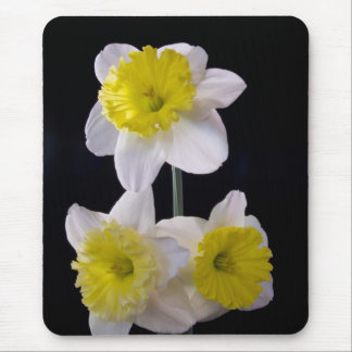 Yellow on White Daffodil Mouse Pad