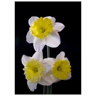 Yellow on White Daffodil zazzle_shirt