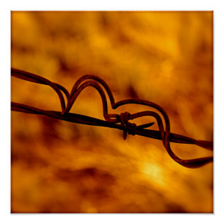 Yellow Orange Barbed Wire Fugue Poster