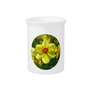 Yellow orange Daffodil 02.2_rd Beverage Pitcher