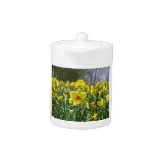 Yellow orange Daffodils 01.0.2 Teapot