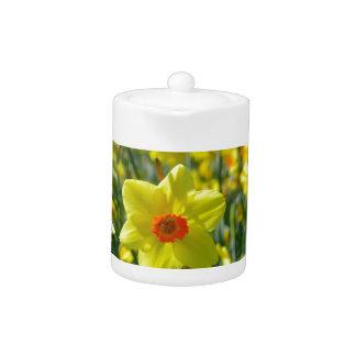 Yellow orange Daffodils 01.0 Teapot