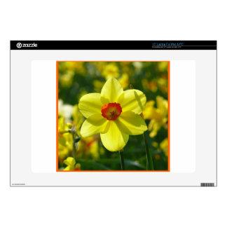 """Yellow orange Daffodils 02.2o 15"""" Laptop Decal"""