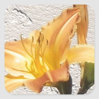 Yellow-Orange Day Lily Square Sticker