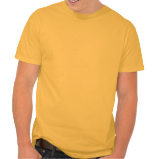 Yellow Orange Raccoon Shirt