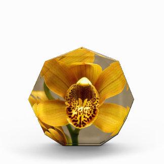 Yellow Orchid Flower Acrylic Award