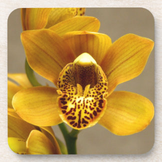 Yellow Orchid Flower Drink Coaster