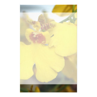 Yellow orchid flower stationery