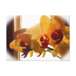 Yellow Orchid Gallery Wrap Canvas