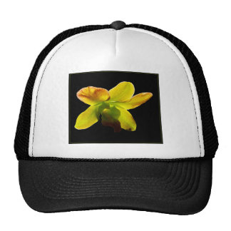 Yellow Orchid Trucker Hat