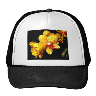 Yellow Orchid Mesh Hats