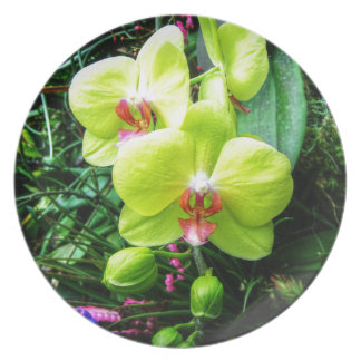 Yellow Orchid Melamine Plate